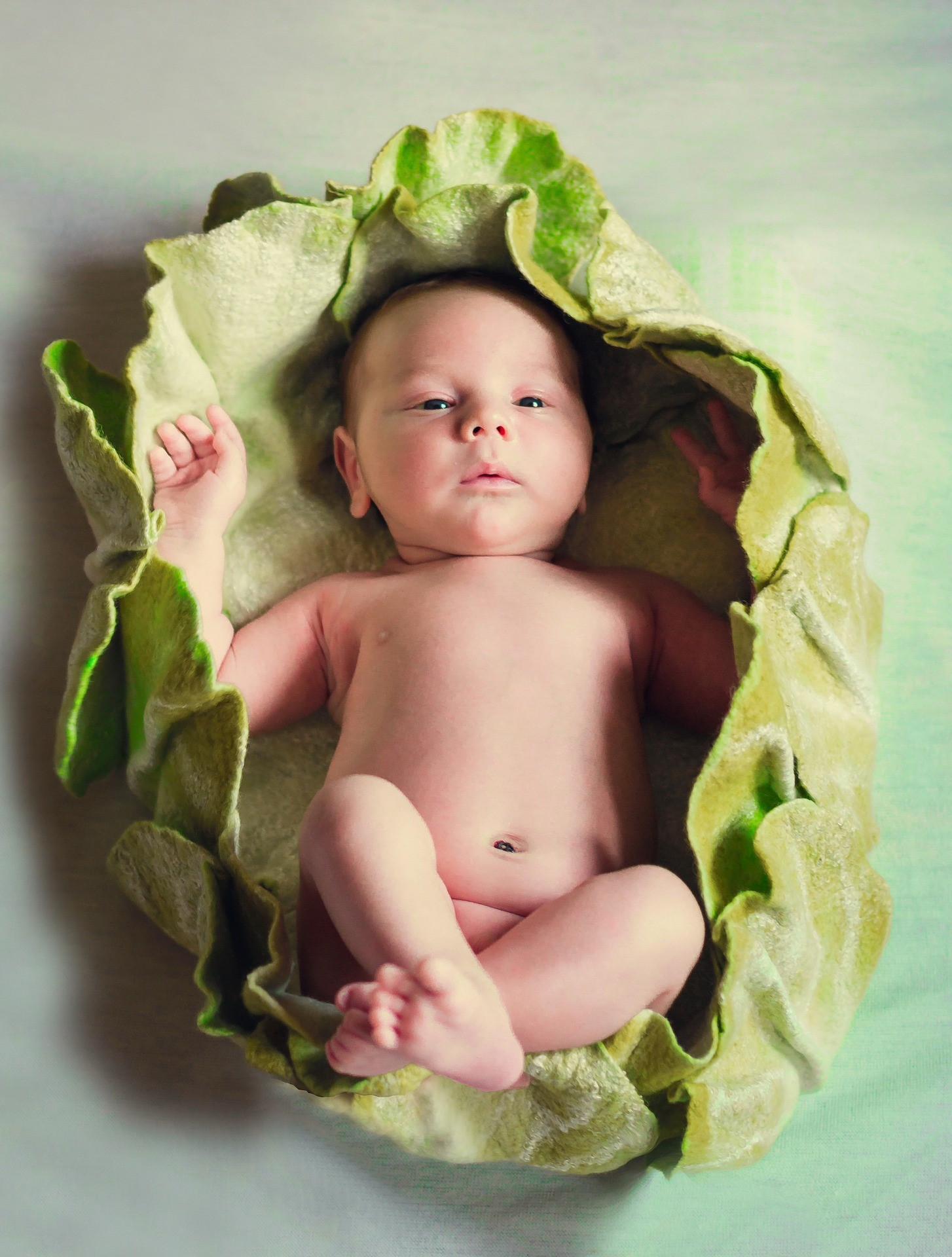 Newborn wrapped in a blanket that looks like lettuce