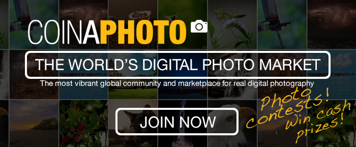 Monthly photo contest from CoinaPhoto