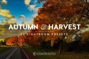 autumn-harvest