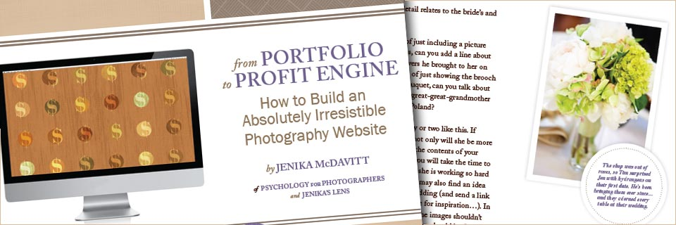 From Portfolio to Profit Ebook for Photographers