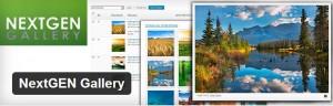 The best plug-in for photographer blogs is NextGen gallery