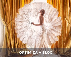 How to optimize a photography wordpress website
