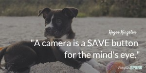 camera-is-a-save-button