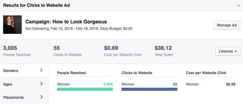Facebook ad results screen