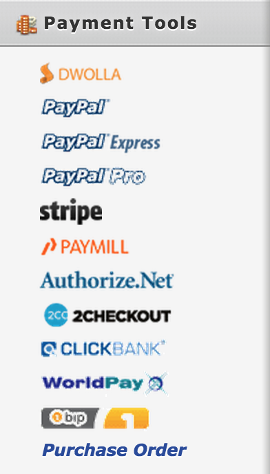 Examples of payment integration options for forms