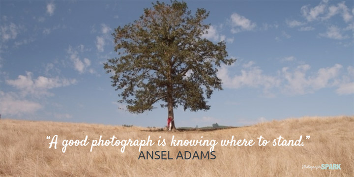 A good photograph is knowing where to stand. Which of the sayings on this page is your favorite?