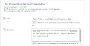Preview of the All in One SEO Pack plugin for photoblogs