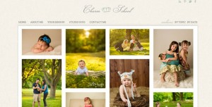 Best website for photographers is Pro Photo Blogs on WordPress
