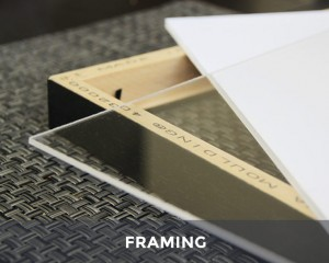 What a Professional Photographer Should Know About Framing