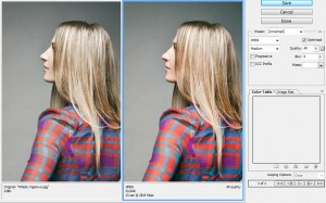 40% Quality reduced the size from 228K to 33.64K with little change in the photo's appearance.