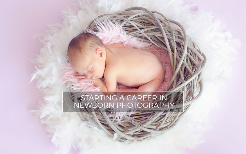 Tips for starting a career in newborn photography