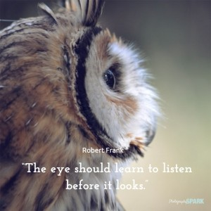 Photography quote - The eye should learn to listen before it looks